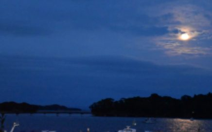 観瀾亭からの月