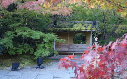 円通院の紅葉